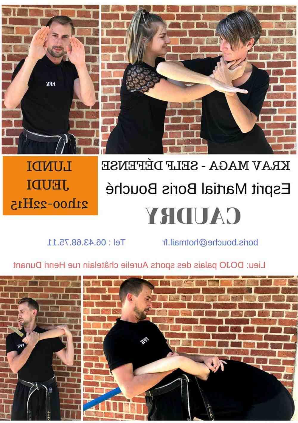 Quel est le meilleur Self-defense ?