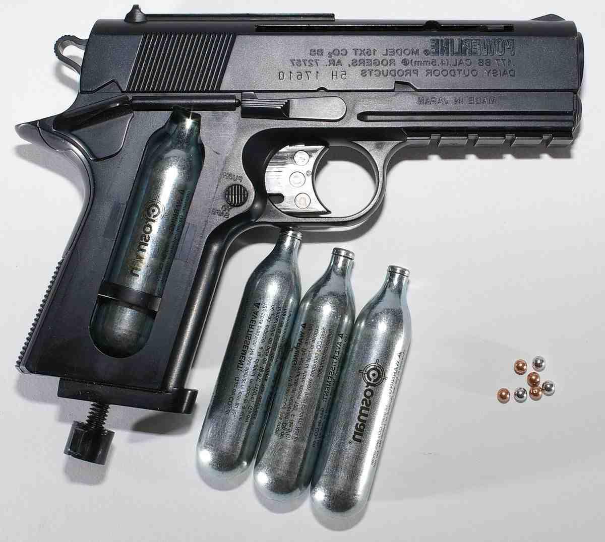 Quelle carabine à plomb pour pigeon ?